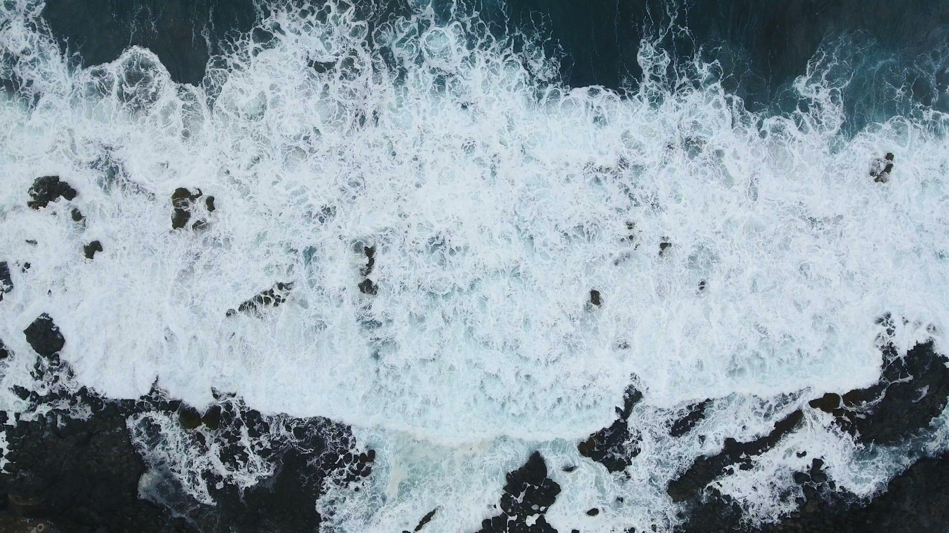 Big Marlin Group Ocean Waves