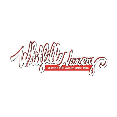 Whitfill Nursery | Clients | Digital Marketing Agency | Big Marlin Group