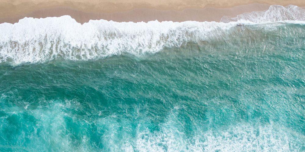6 Tips for SEO | Digital Marketing | Blog | Big Marlin Group